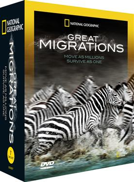 大遷徙 Great migrations = Move as millions survive as one
